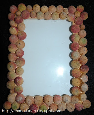 acorn picture frame