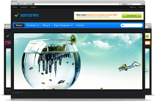 Image for Reviews – Theme by Templatic