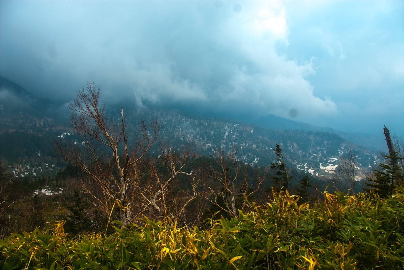 標高2000m近くから見下ろした景色