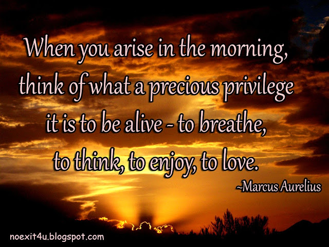 When you arise in the morning, think of what a precious privilege it is to be alive - to breathe, to think, to enjoy, to love. -Marcus Aurelius
