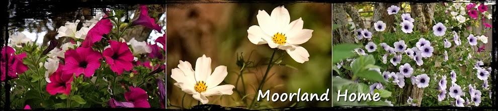 Moorland Home