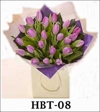 Hbt-06