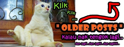 """KLIK """"OLDER POSTS"""""""