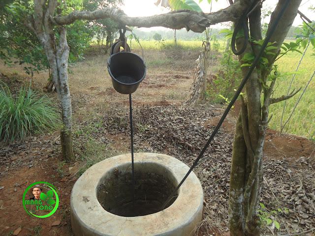 FOTO : Sumur timba ini digunakan saat ngaliwet atau acara di sawah admin... Airnya jernih