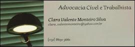 Clara Valente M. Silva