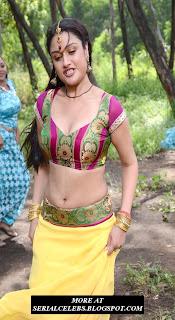 Sonia Agarwal navel