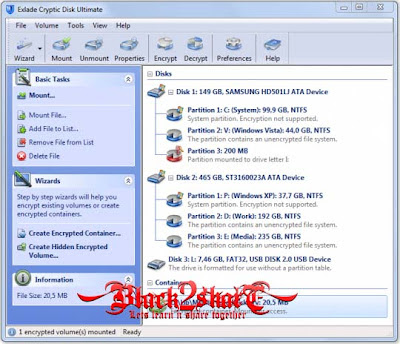 Exlade Cryptic Disk Ultimate 3.0.29.569
