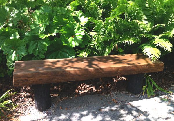 En bänk med gröna växter bakom