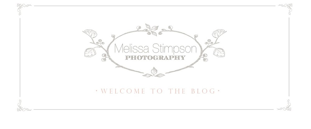 Melissa Stimpson Photography