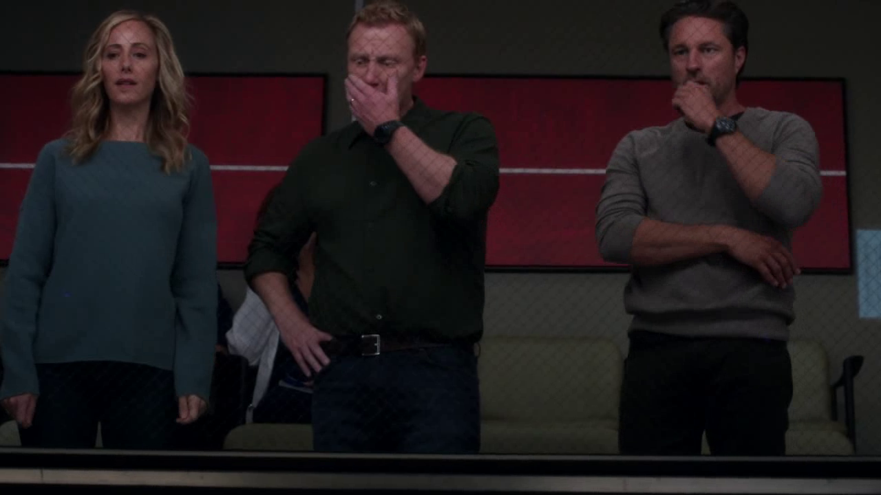 Sin fin de frases: Anatomía de Grey Temporada 14 (Season 14)
