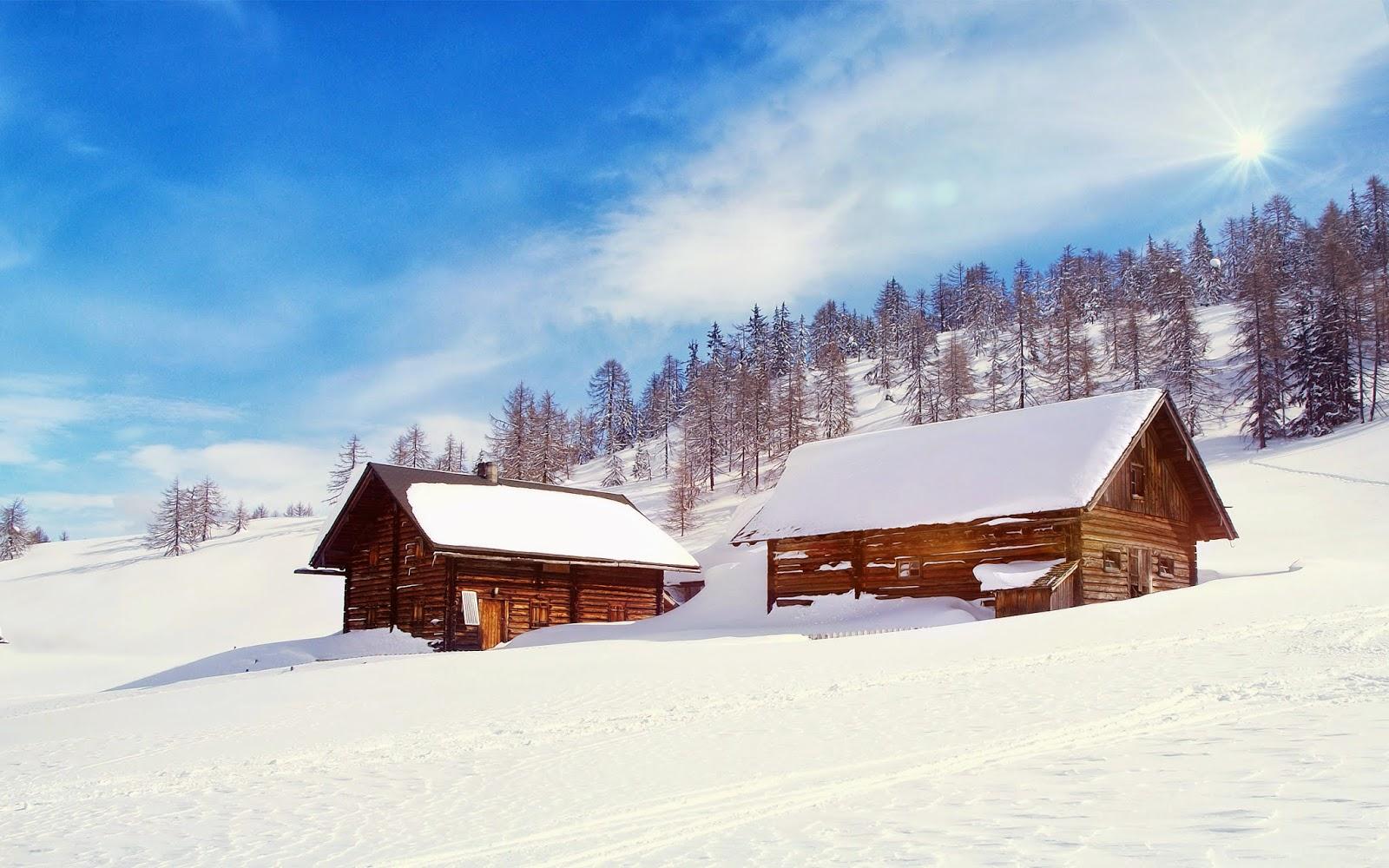 Nieve Wonderland