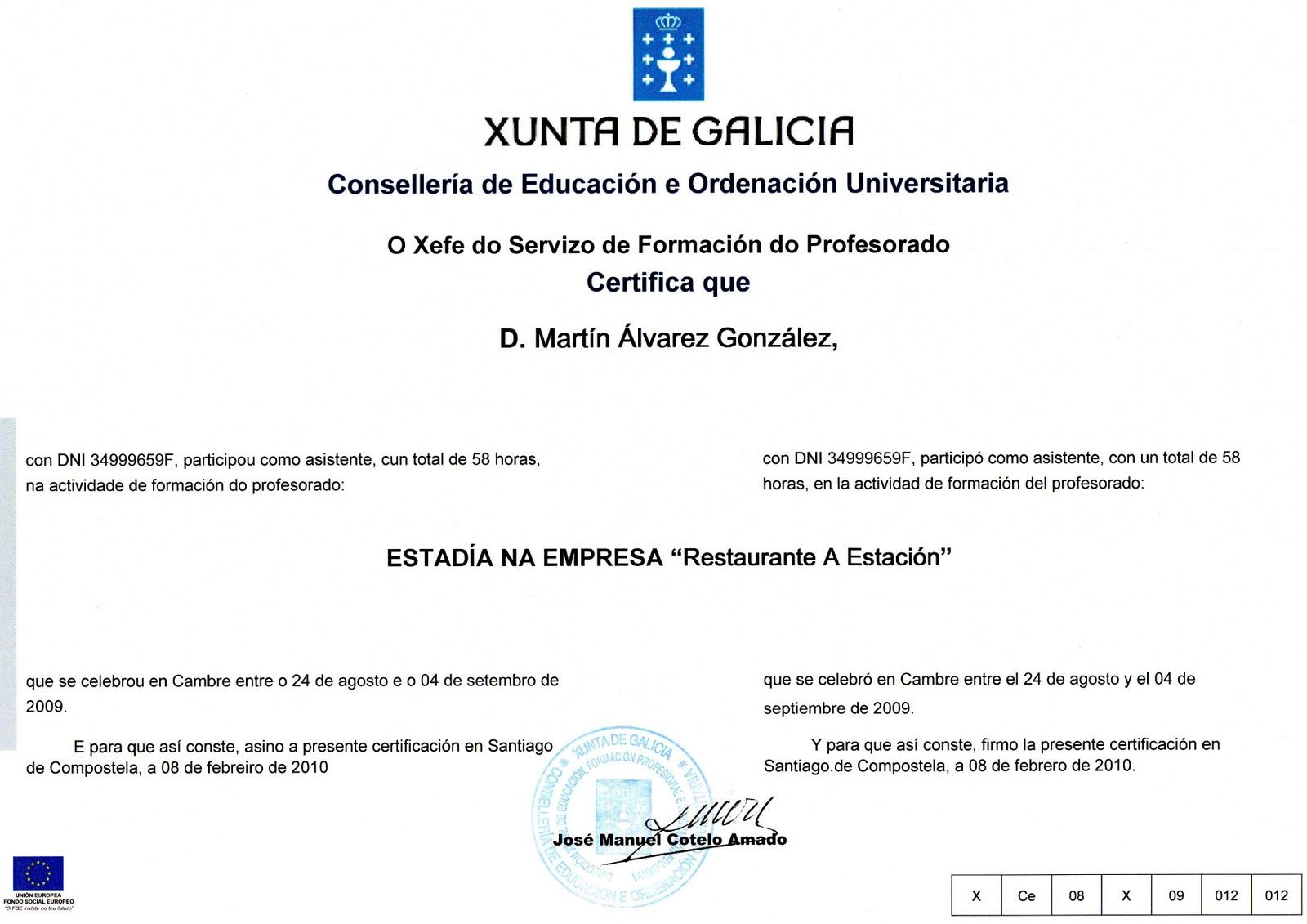 Mestre Martín: Títulos curriculum vitae