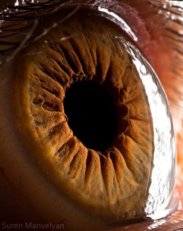 Awesome Eye Photography by Suren Manvelyan