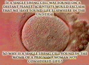 Double Standards and Single Cells