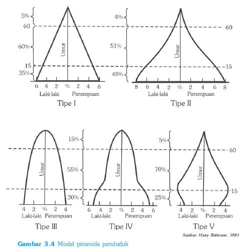 Bentuk Bentuk Model Piramida Penduduk