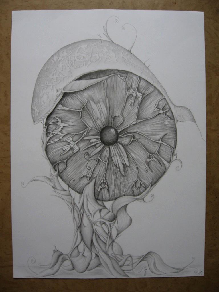 Kresba Navrhy Odevu Rucni Prace A Fotografie Kristalova Koule