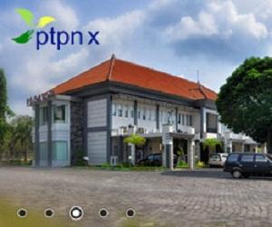 Lowongan Kerja BUMN PT Perkebunan Nusantara X (PTPN X) Mei 2013
