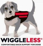 Check Out WiggleLess!!
