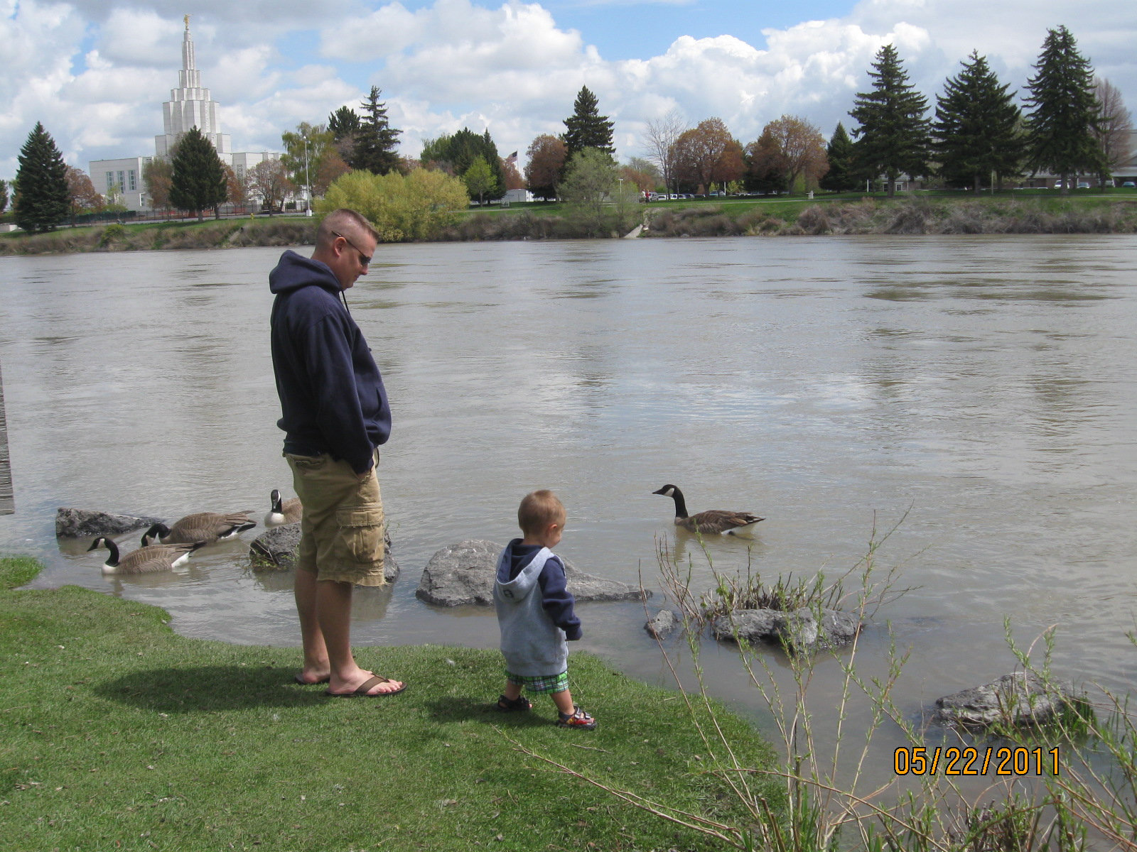 ... walked on the greenbelt and looked at the Idaho falls Temple and water falls. The kids got to feed the geese and they thought that was so much fun.