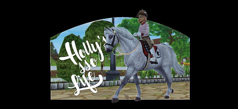 Holly's SSO life