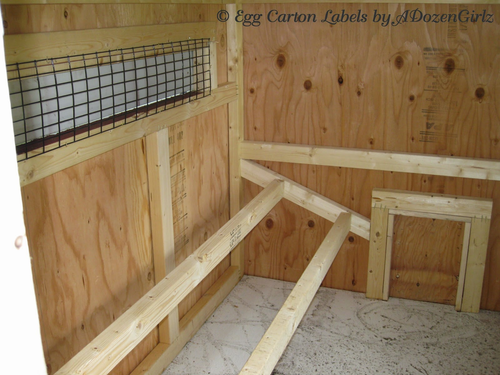 Tips For Installing Roosts In Your Chicken Coop Best