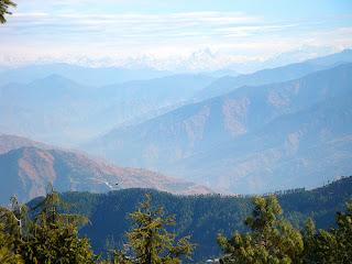 Kufri - Shimla