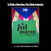 La Diada a Barcelona. Una ullada arenyenca
