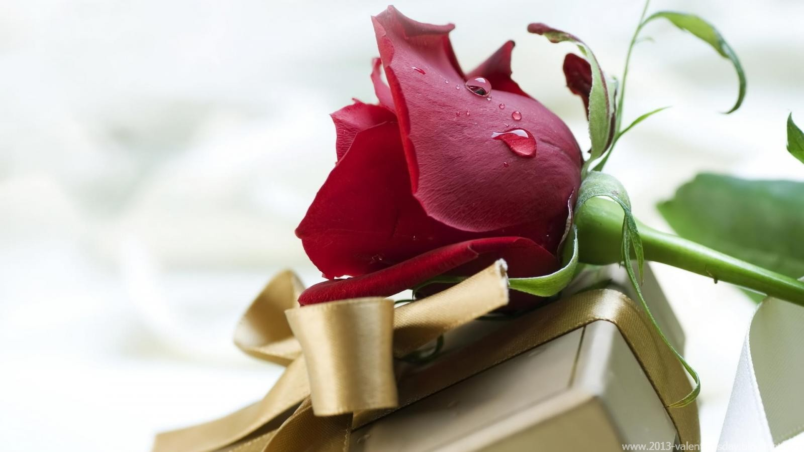 Happy valentine s day 2016 ideas images and sms wishes