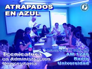 8: Tecnicatura Superior en Administración y Gestión de Recursos para Instituciones Universitarias