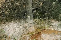 Detall de les parets ennegrides de l'interior de la poua de les Ferreries, testimoni del seu us modernament com a abocador
