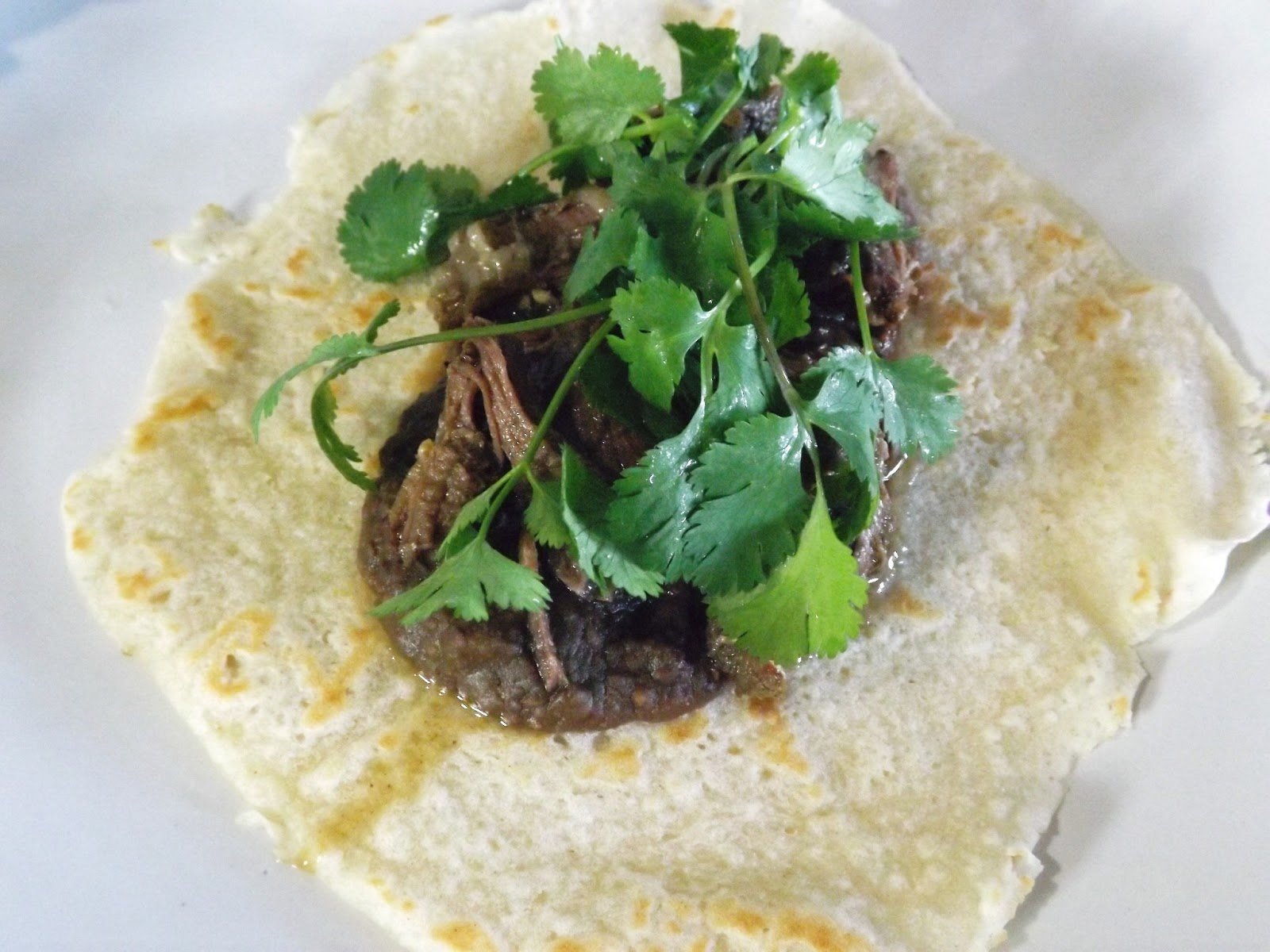 Epic Shredded Beef Soft Tacos, gluten free - Skinny GF Chef healthy ...