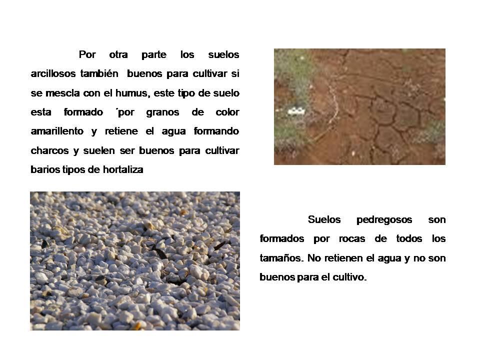 Tipos de suelos - Suelos para ninos ...