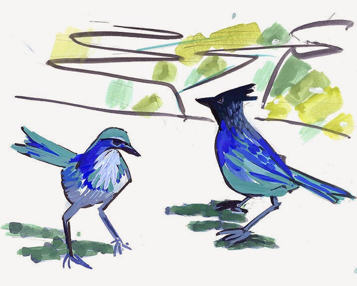Two Jays by Char Fitzpatrick