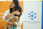 Anushka with Puppy at Blue Cross Pet Carnival Press meet-thumbnail-7