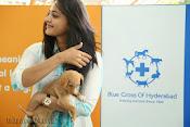 Anushka with Puppy at Blue Cross Pet Carnival Press meet-thumbnail-7