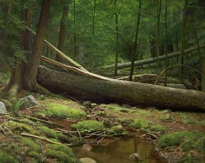pintura-paisaje-natural