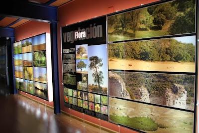 EXPOSICIÓN MUSEO DEL CERRATO EN BALTANÁS. BLOG ESTEBAN CAPDEVILA