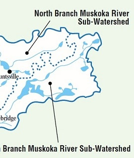 Muskoka Watershed Council schematic.