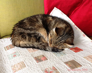 Cat taking a rest from Quilt Inspecting