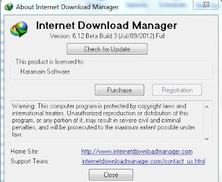 Faster Download With Internet Download Manager 6.12 Build 3