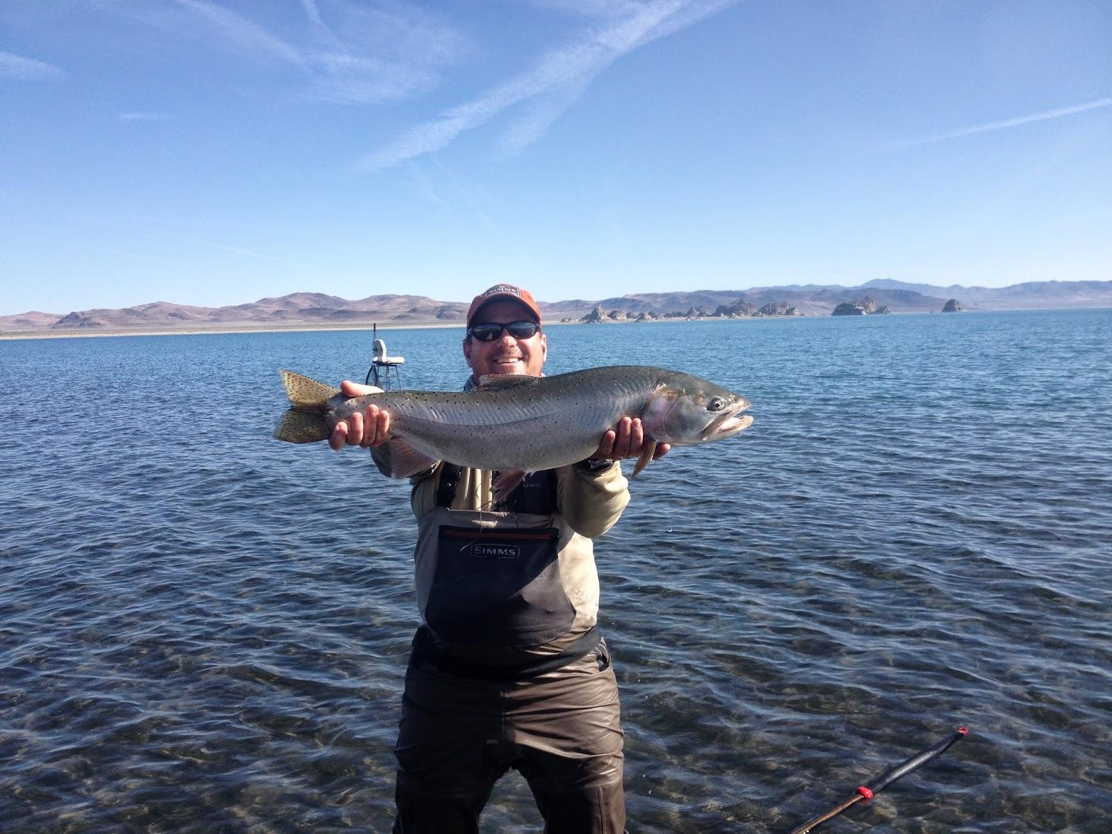 Northern sierra fly fishing pyramid 5 14 14 for Sierra fly fishing