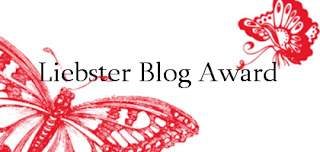 Liebster Blog Award 2 oraz 3 !