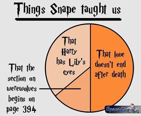 funny statistics pics humor