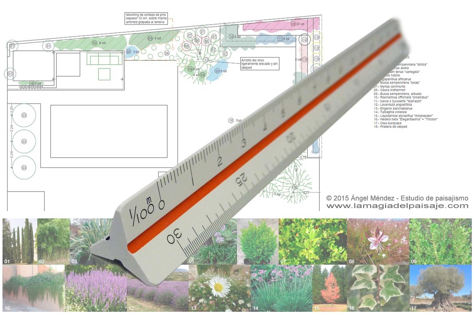 Dibujo a escala conceptos b sicos for Hacer planos a escala