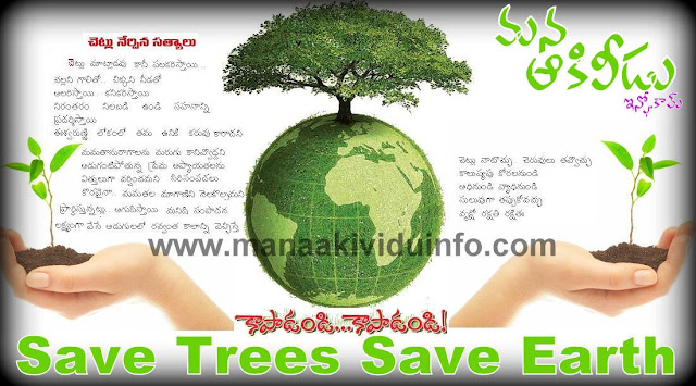 Akividu Save Trees Save Earth
