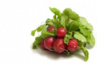 Fresh, organic radish bunch