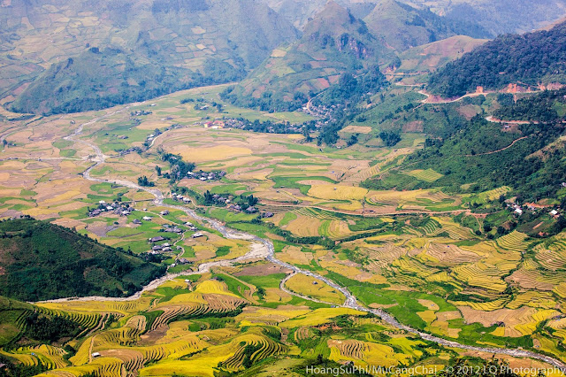 Mu Cang Chai terraced fields