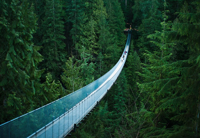 vadide asma köprü