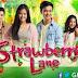 Strawberry Lane - 31 October 2014