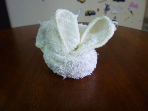 动物系列:手帕变小兔子